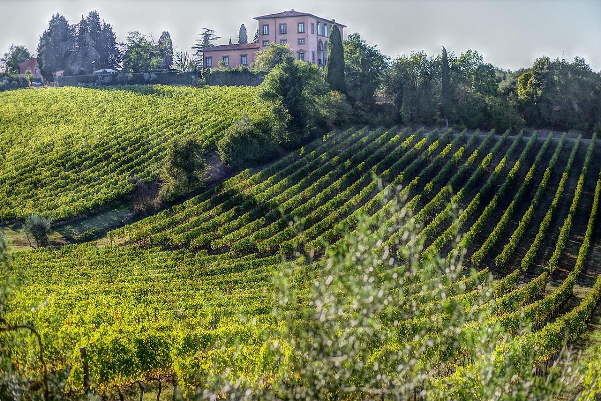 Weekend in vigna Toscana