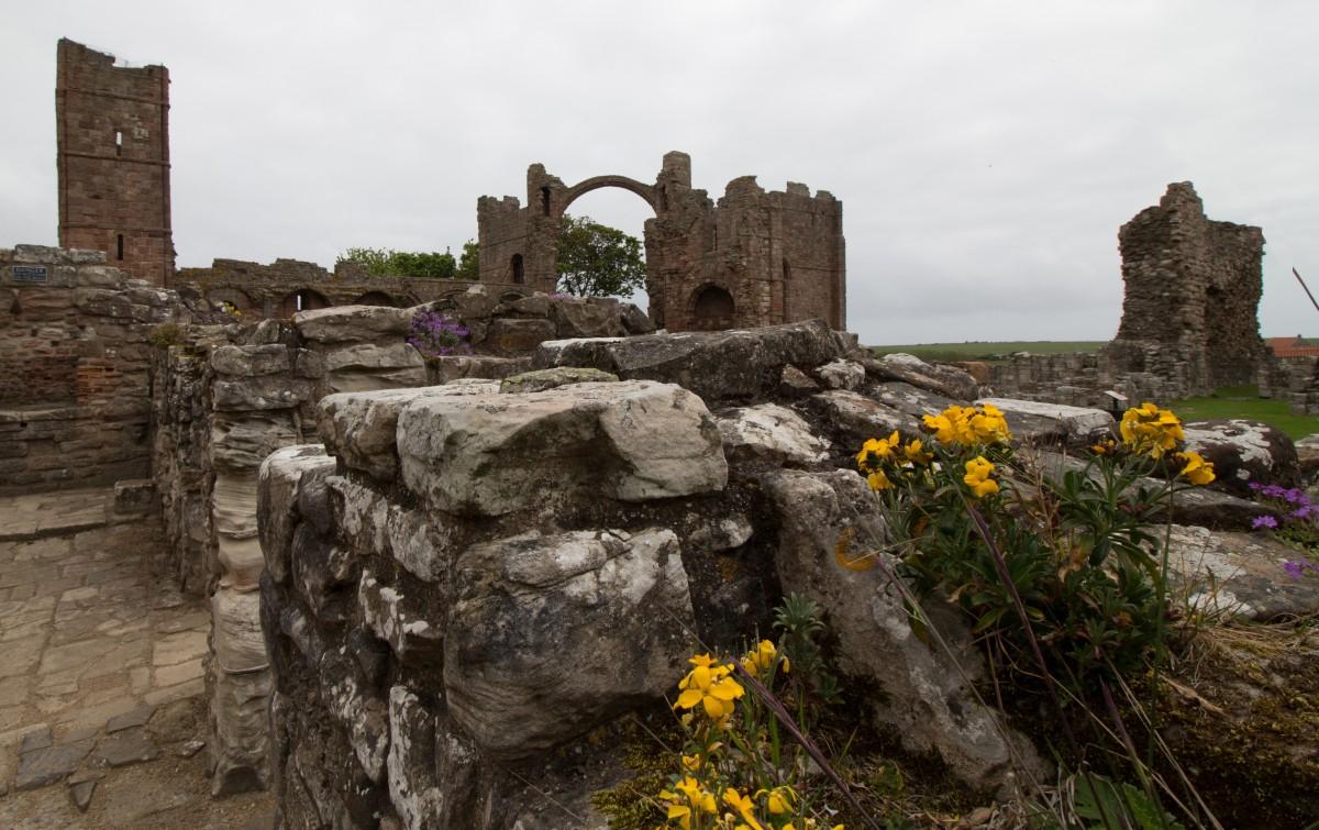 abbazia di lindisfarne in scozia 1