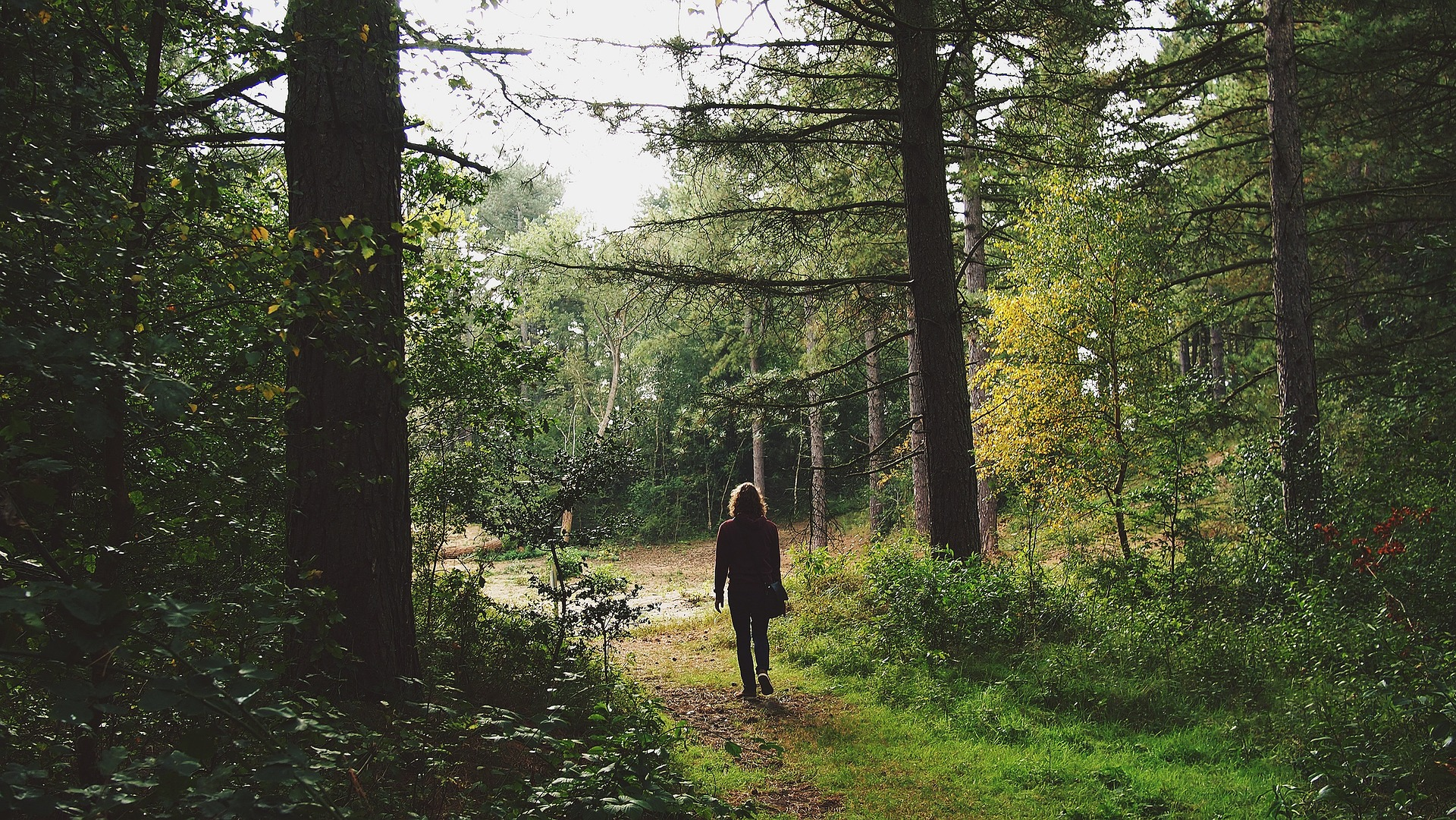 camminate in solitaria