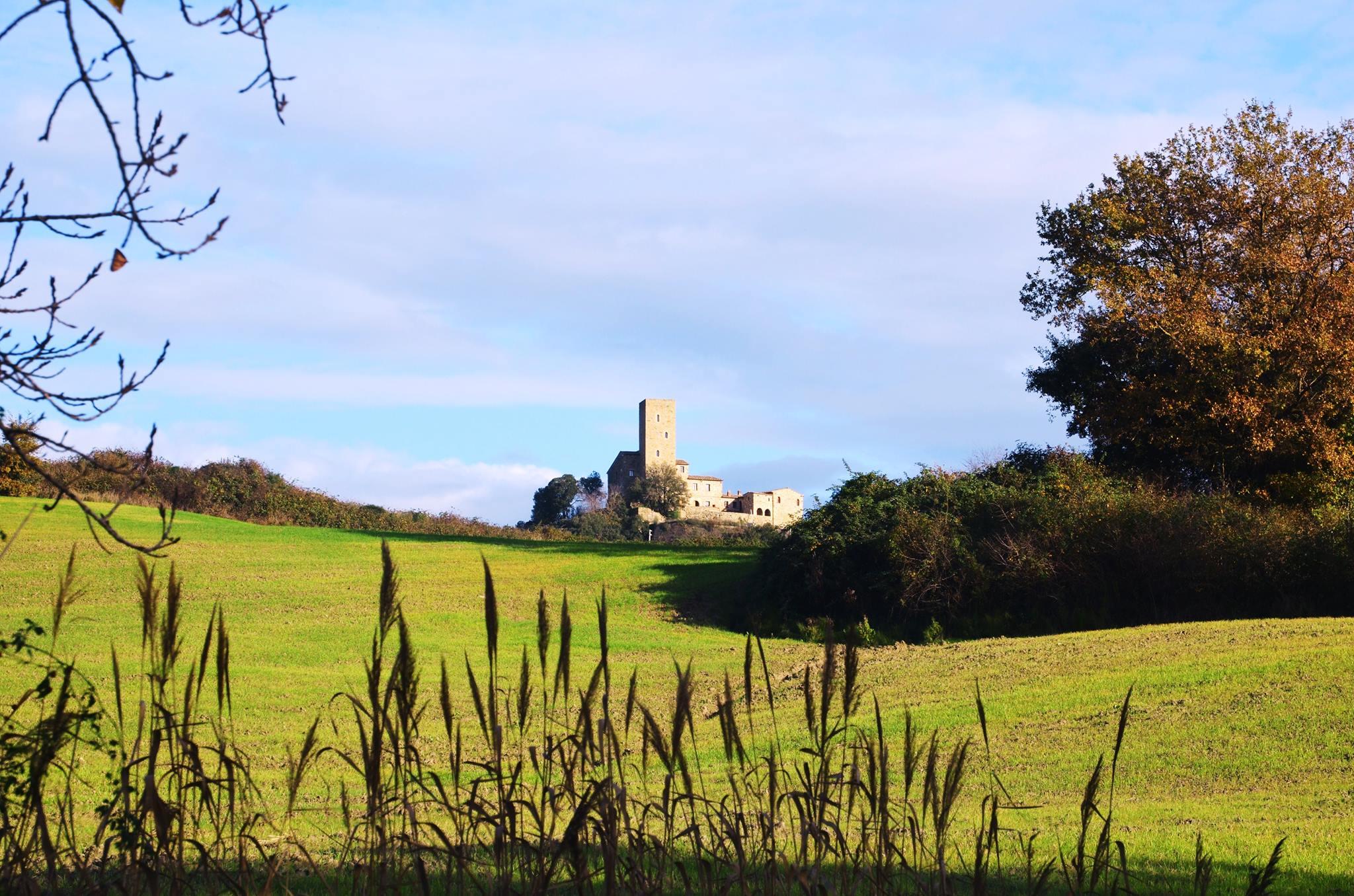 Castello di Luppiano