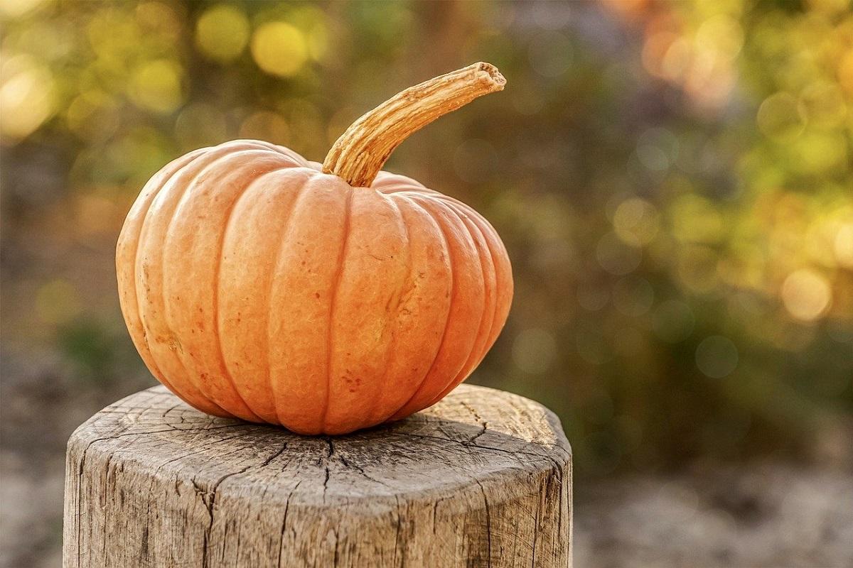 Halloween offerte weekend