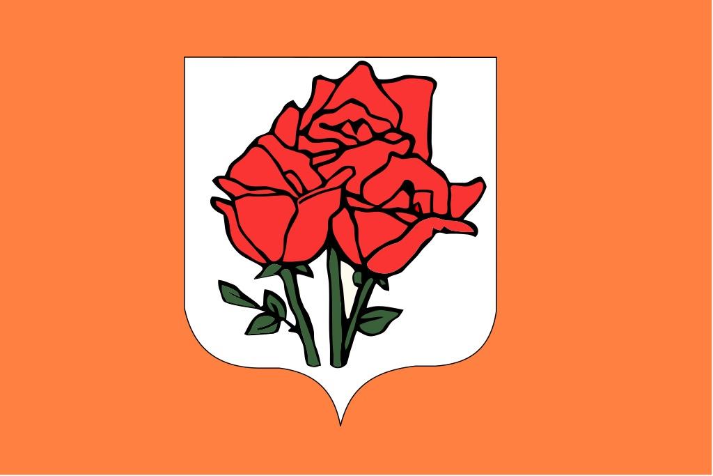 isola delle rose rimini 3