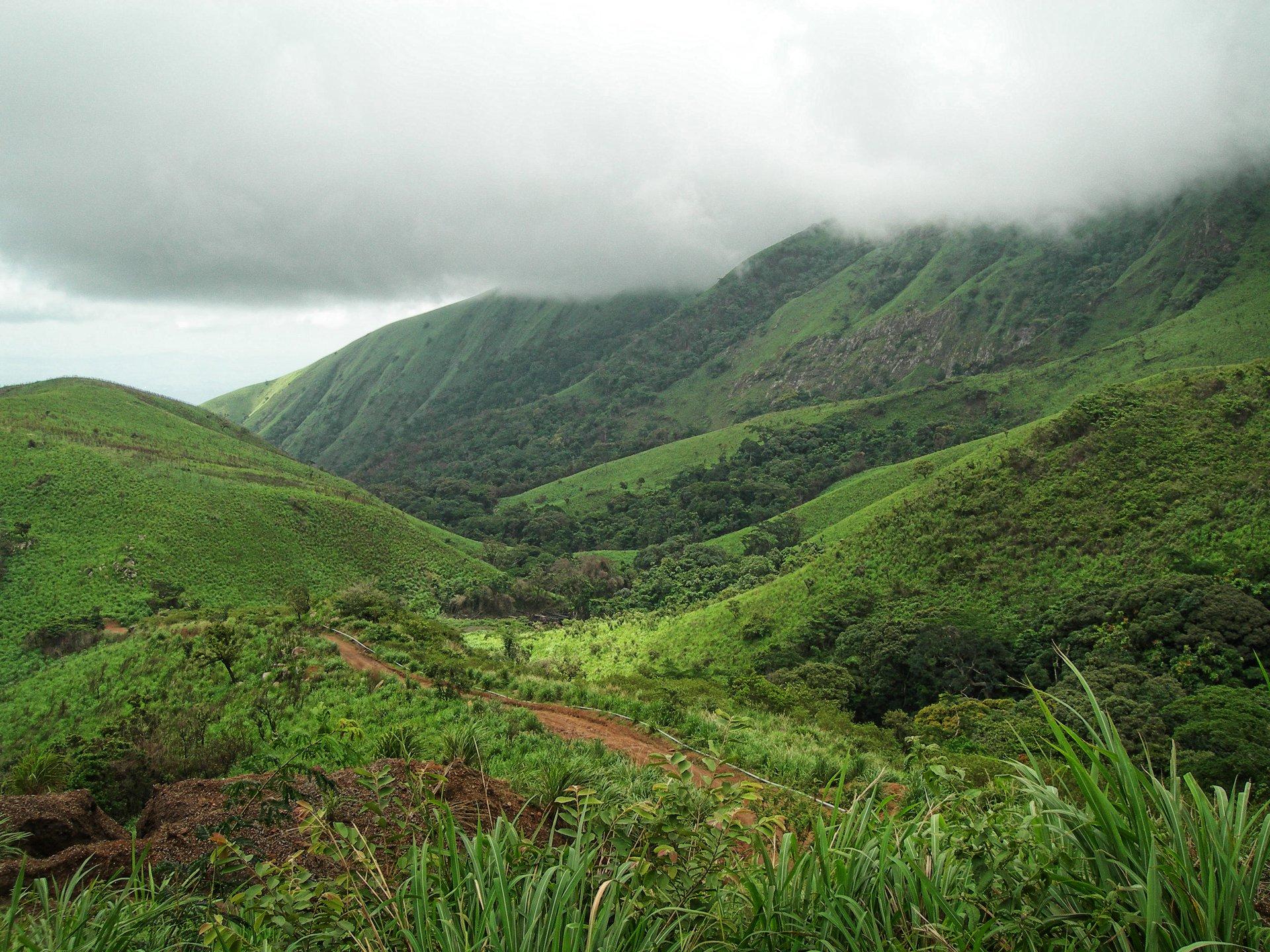 sapo national park liberia