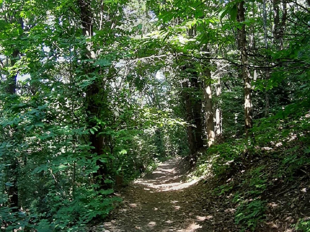 sentiero della cavallasca