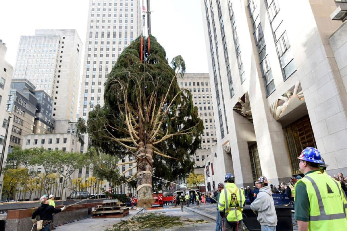 Albero di Natale Rockefeller Center 2020