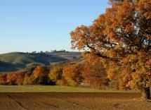 Borghi colline bolognesi