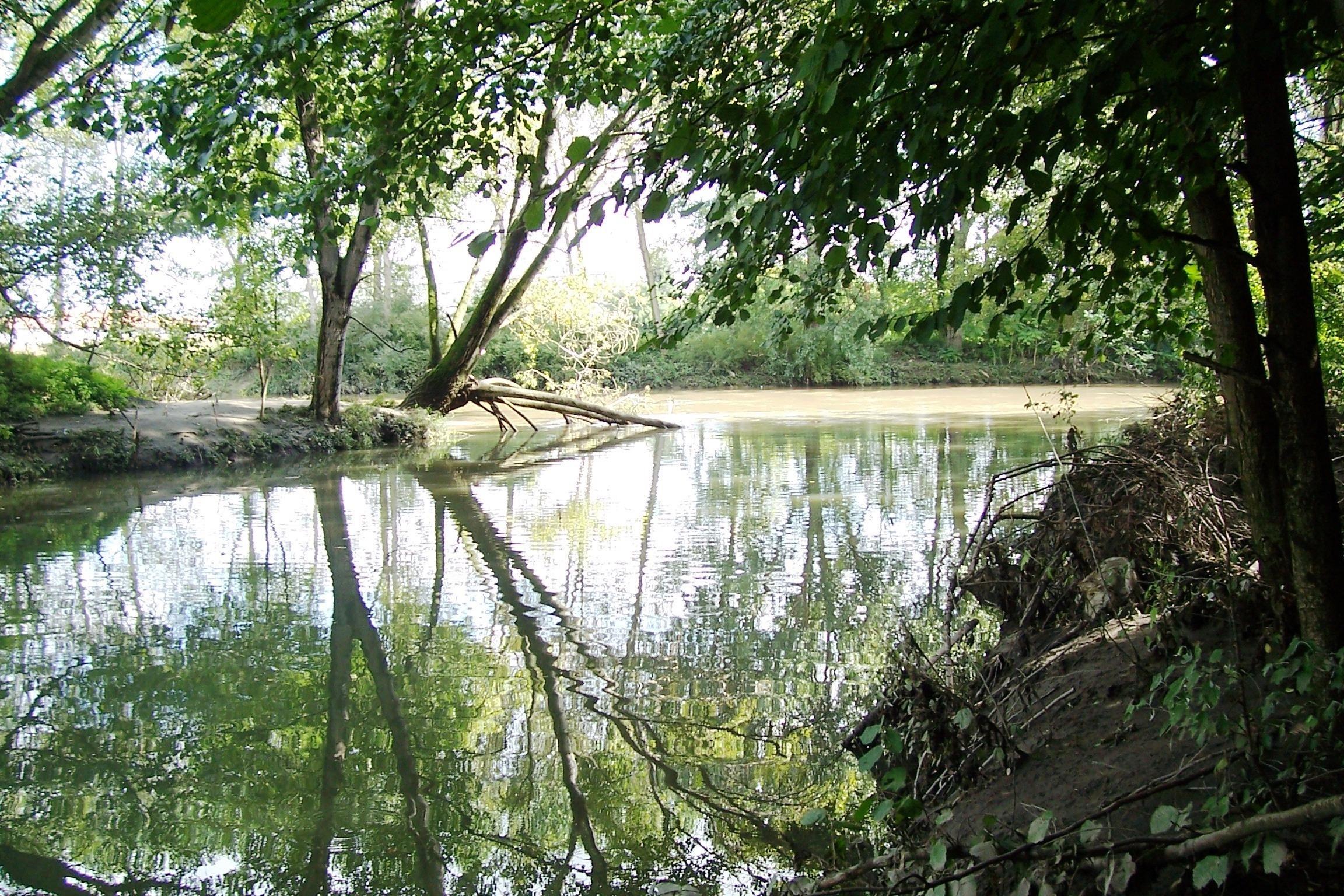 Parco della Vettabbia Milano: un'oasi agricola a pochi passi dalla città