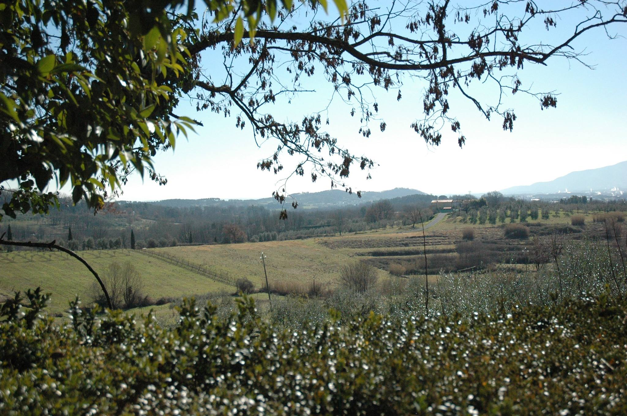 borghi del vino toscana