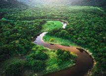 cause della deforestazione in Amazzonia