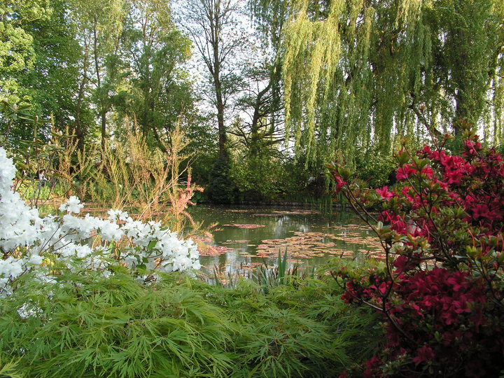 Giardino Monet