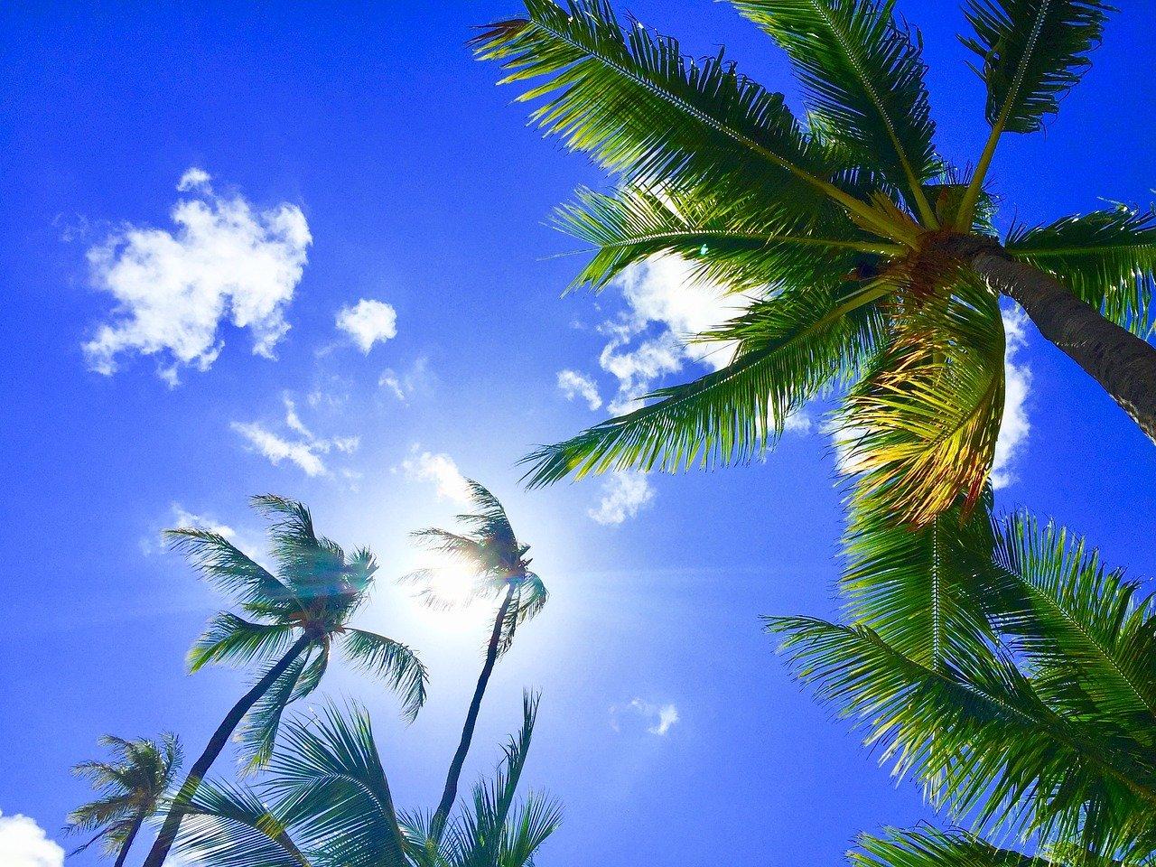Hawaii pagano turisti