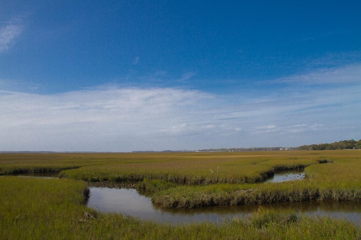 Sea Islands Stati Uniti