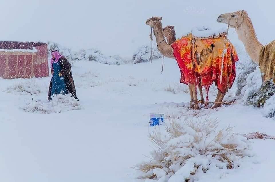 Deserto neve