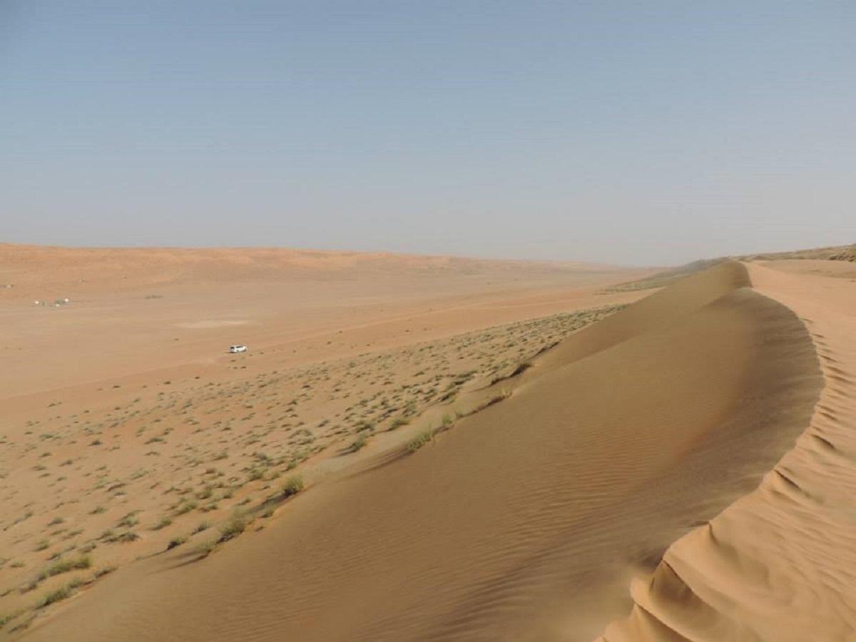 Deserto di Wahiba