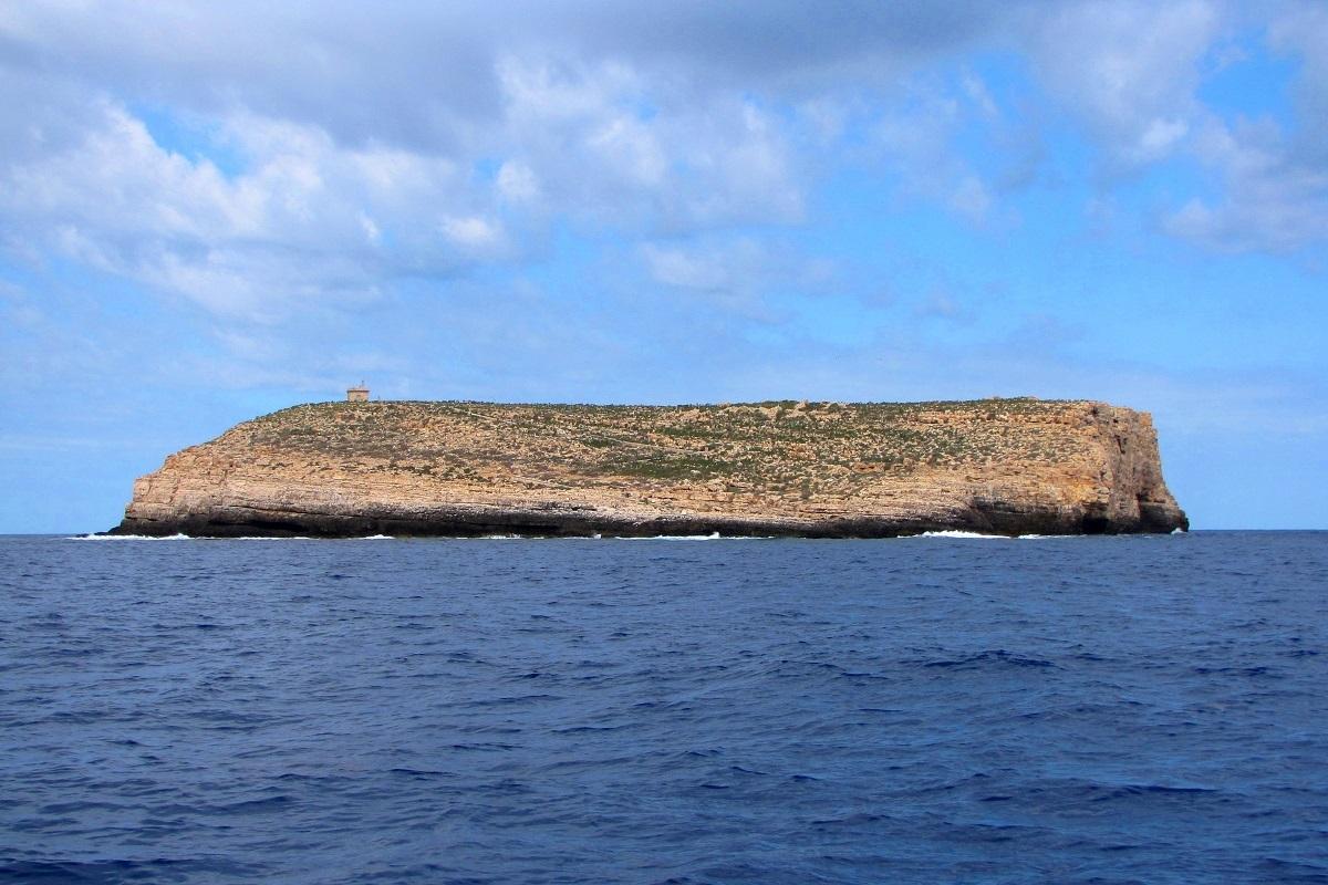 Lampione isola squali