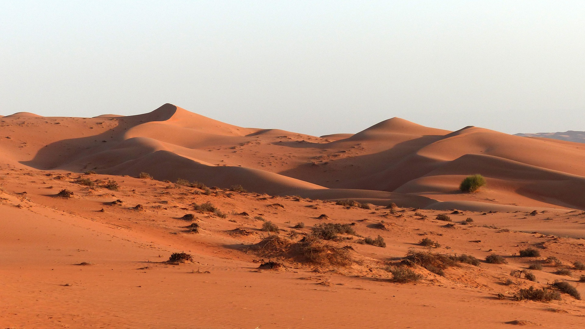 tour oman deserto e mare