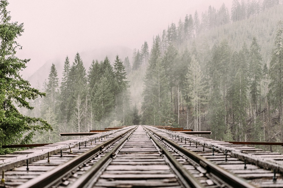 Treno delle meraviglie Torino