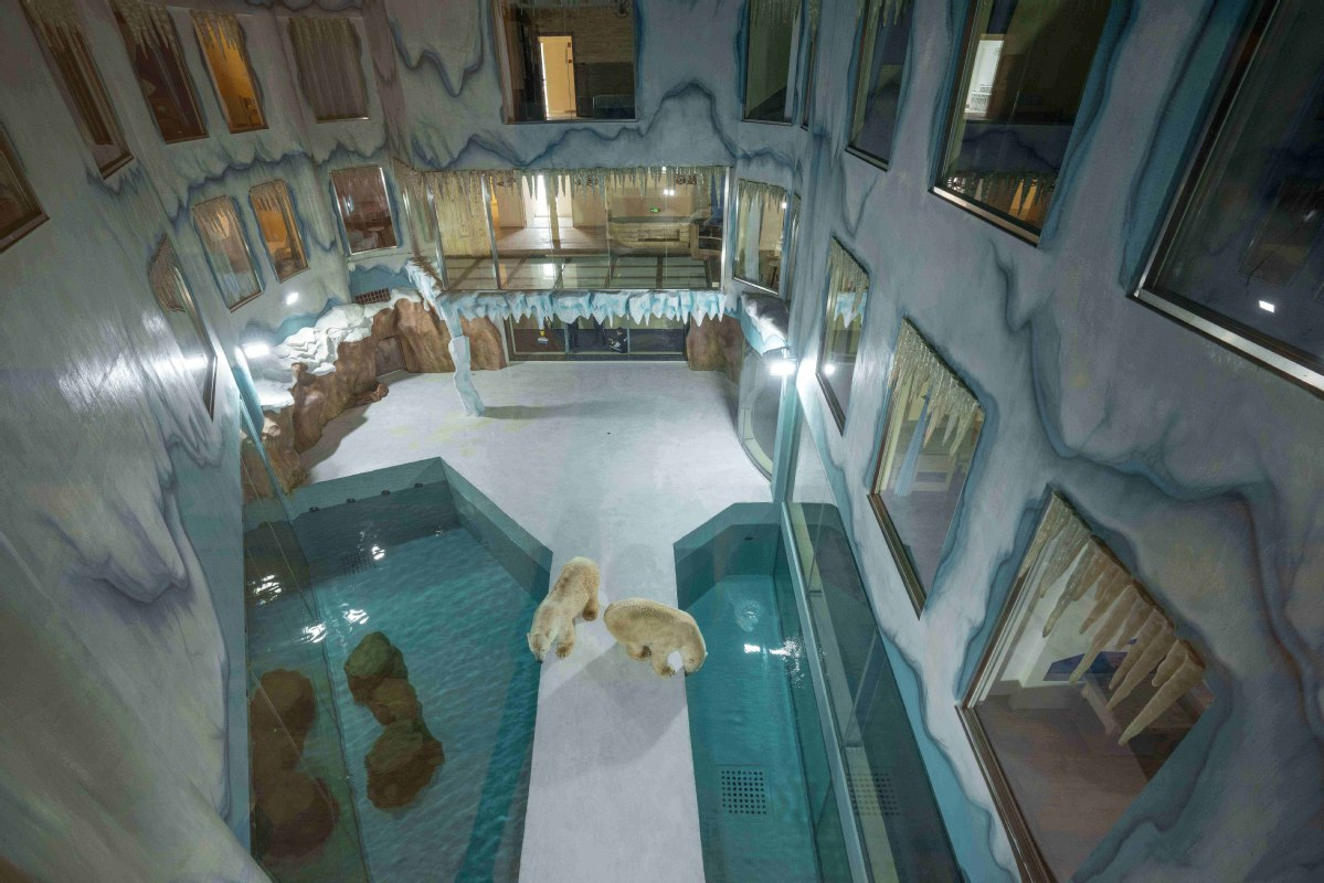Hotel orsi