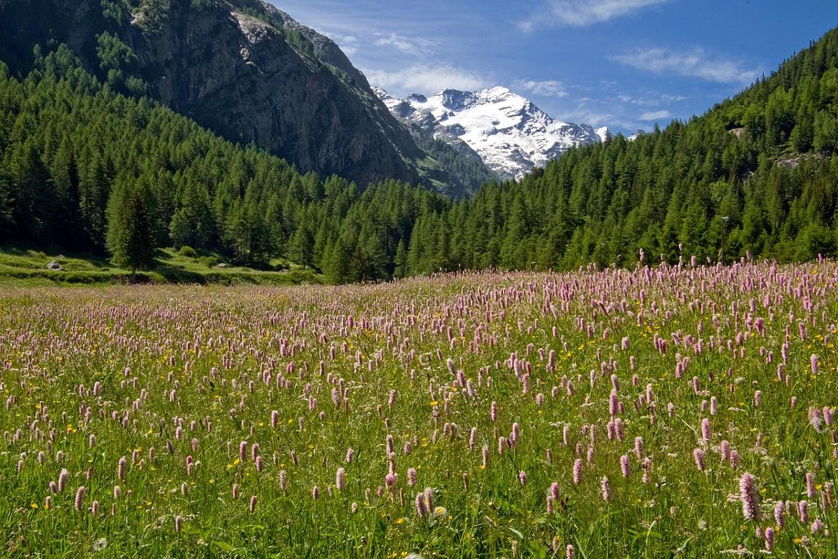 Sentiero dei parchi d'Italia percorso