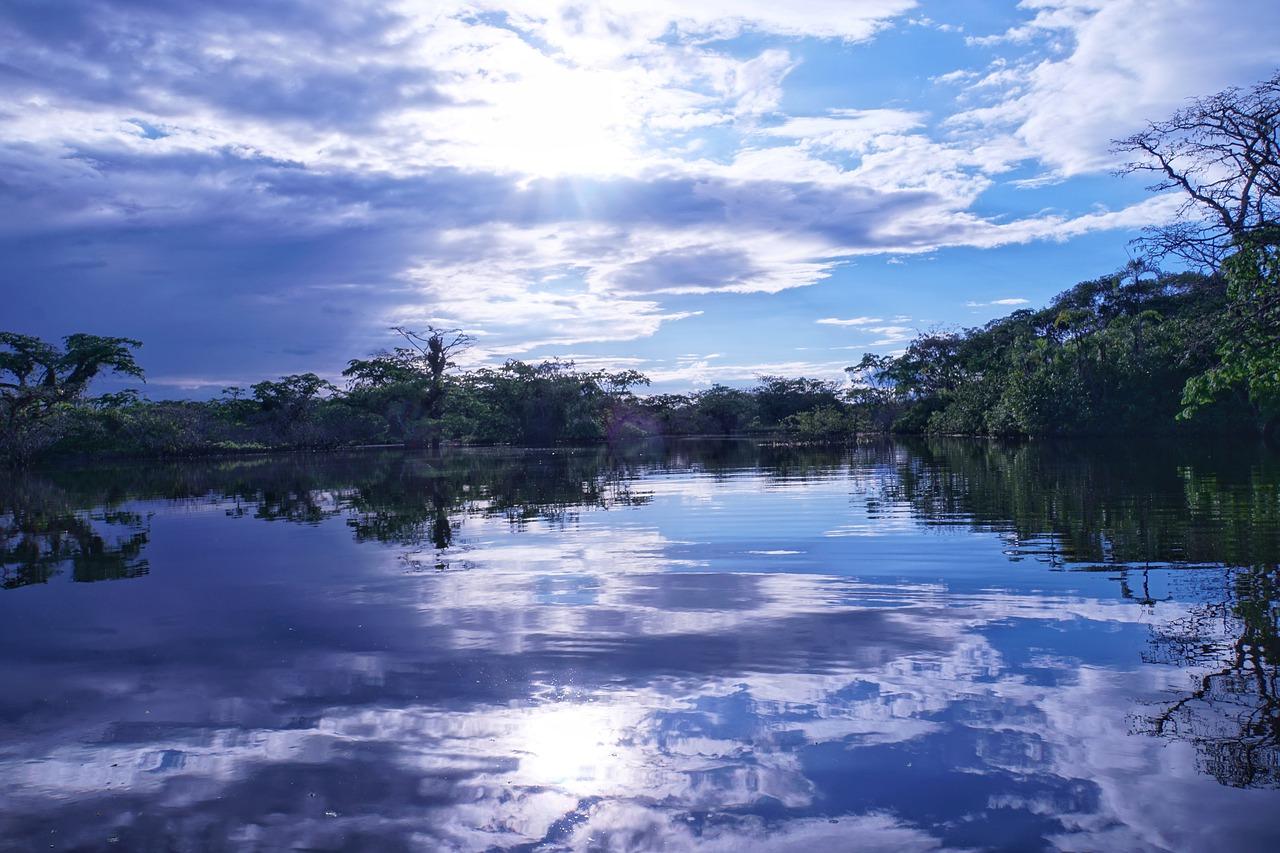 amazonia-4412620_1280