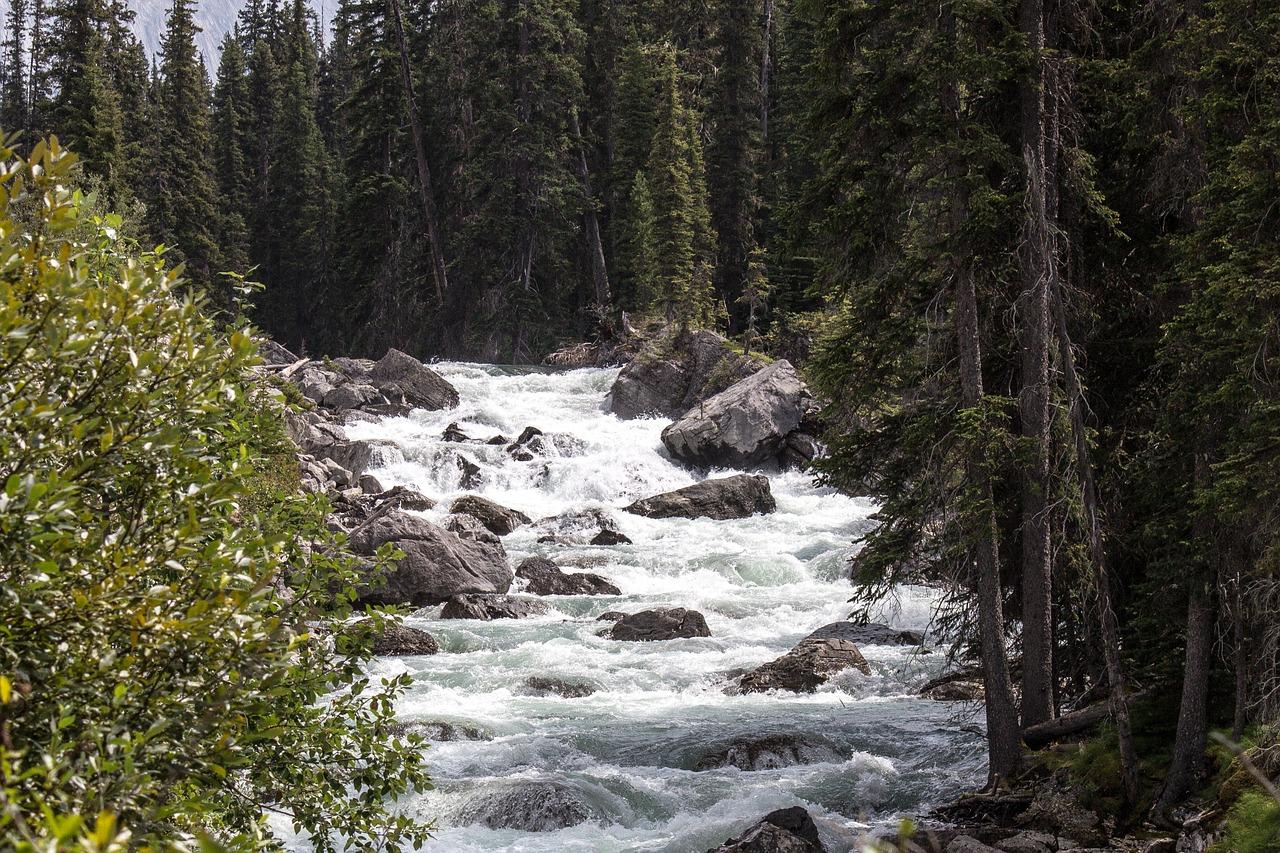 maligne river 1485060 1280
