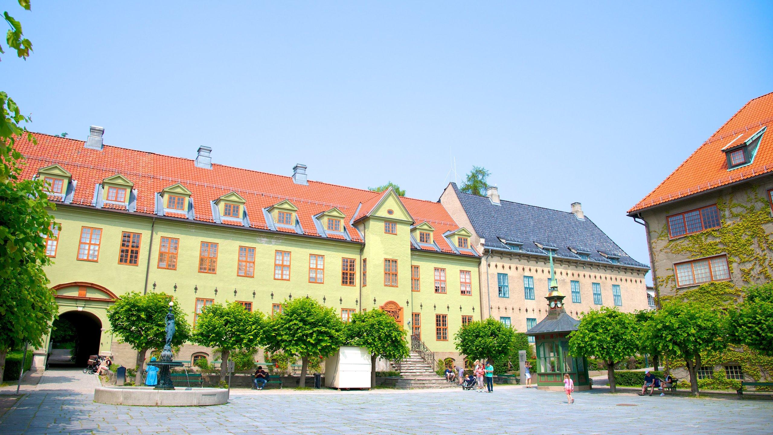 51861 norwegian museum of cultural history