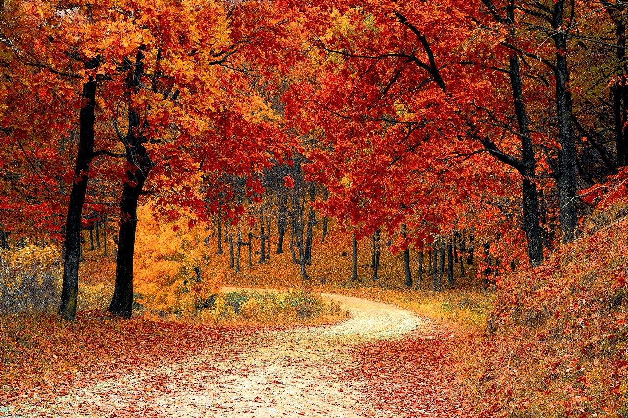Quando cade l'equinozio di autunno