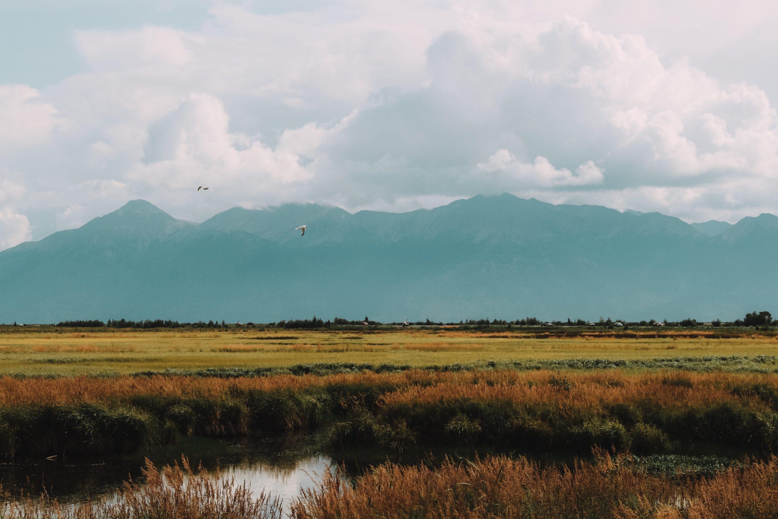 Paesaggi Anchorage