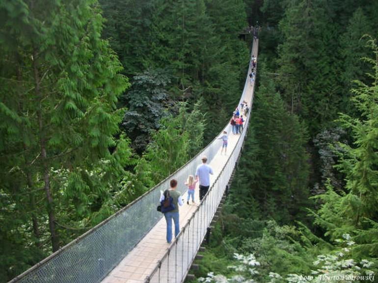Escursione ponte sospeso di capilano vancuver canada for Progettista di ponti online gratuito
